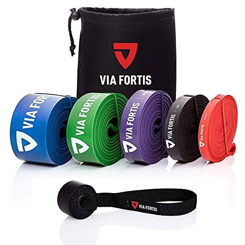 VIA FORTIS Premium Resistance Bands + Übungsanleitung und Tasche - Widerstandsbänder/Klimmzugband...